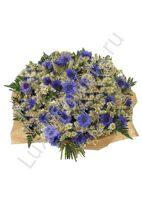 Букет с доставкой по москва васильки, свадебные букеты для невесты из синих тонах